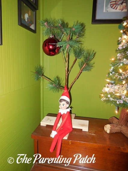 The Elf and the Charlie Brown Christmas Tree