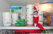 The Elf in the Freezer: The Elf on the Shelf Day 5