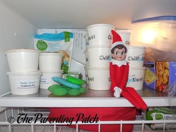 The Elf in the Freezer