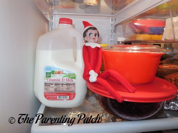 The Elf in the Refrigerator