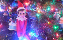 The Elf and the Elmo Ornament: The Elf on the Shelf Day 20