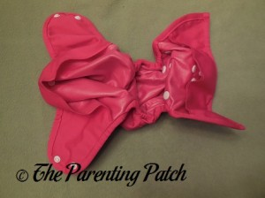 Inside the Raspberry Imagine One Size All-In-Two Cloth Diaper