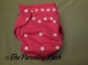 Front of Raspberry Imagine One Size All-In-Two Cloth Diaper with Insert