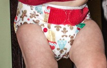TotsBots Gingerbread Family: Daily Diaper