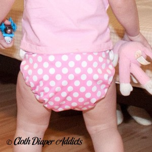 Pink Dot Bottombumpers Cloth Diaper 5