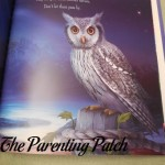 Owl in Blessings