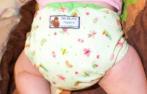 Green Butterfly BB Butts Diapers: Daily Diaper