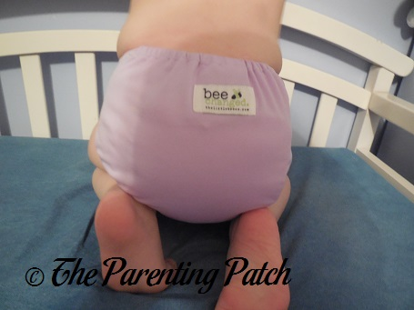 Brazilian Ameythst The Little Bee Co. Cloth Diaper 9