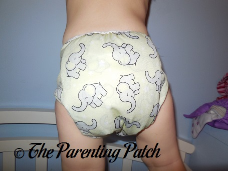 Trumpet Imagine Cloth Diaper 10