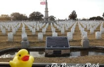 The Duck in the Mobile Magnolia Cemetery: The Rubber Ducky Project Week 4