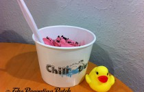 The Duck and the Frozen Yogurt: The Rubber Ducky Project Week 9