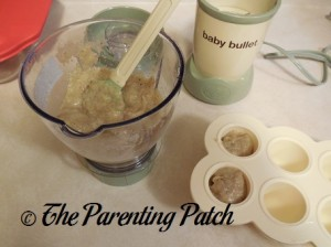 Spooning Baby Food into Baby Bullet Batch Tray