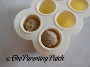 Baby Food Frozen in Baby Bullet Batch Tray