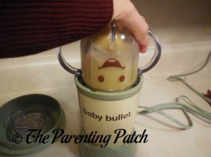 Using the Baby Bullet Short Cup 2