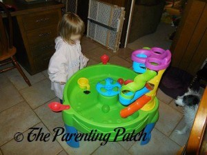 Poppy Playing with the Step2 Busy Ball Play Table 3