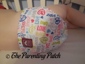Back of Royal Fluff One-Size Pocket Diaper on Preschooler 1