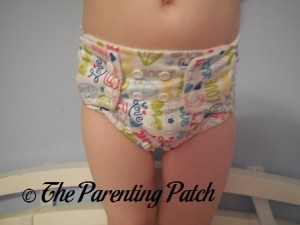Front of Royal Fluff One-Size Pocket Diaper on Preschooler 2