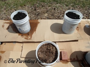 Soil in Containers