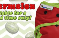 Introducing Watermelon: New Limited Edition Shell from Best Bottom Diapers