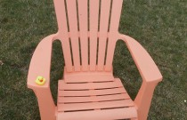 The Duck on the Orange Lawn Chair: The Rubber Ducky Project Week 15