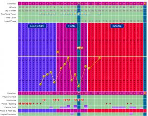 My Second Pregnancy Fertility Chart