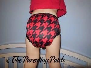 Back of Nicki's Diapers Diaper Cover on Toddler
