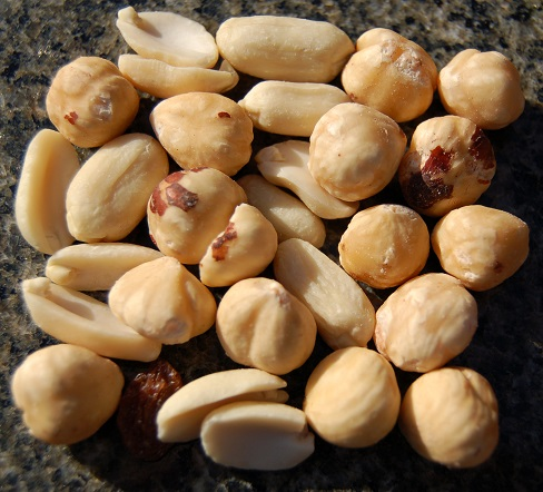 Peanuts on Counter