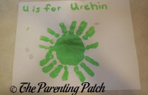 U Is for Urchin Handprint Craft