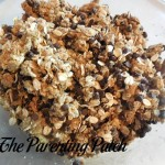 Chocolate Chip Oatmeal Peanut Butter Cookie Dough