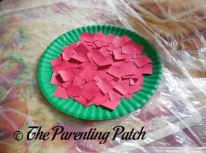 Red Paper Squares Glued to Green Paper Plate