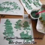 Preschool Homeschool Curriculum: Color Green Lesson Plan