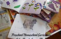 Preschool Homeschool Curriculum: Color Purple Lesson Plan