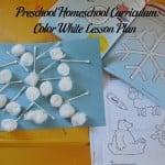 Preschool Homeschool Curriculum: Color White Lesson Plan