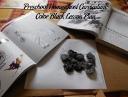 Preschool Homeschool Curriculum: Color Black Lesson Plan