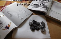 Preschool Homeschool Curriculum: Color Black Lesson Plan