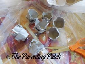 Cutting Apart the Egg Carton Cups
