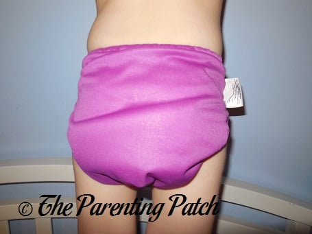 Dazzle bumGenius Elemental Cloth Diaper 7