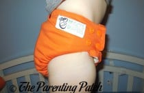 Dreamsicle Nicki's Diapers One-Size Bamboo All-in-One: Daily Diaper