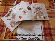 Preschool Homeschool Curriculum: Color Brown Lesson Plan
