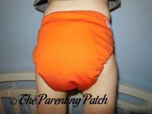Back of Dreamsicle Nicki's Diapers One-Size Bamboo All-in-One Cloth Diaper on Toddler