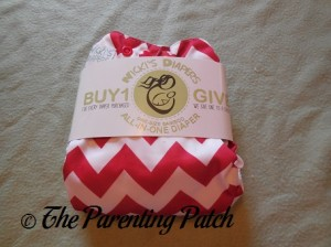 Front of Candy Cane Chevron Nicki's Diapers One-Size Bamboo All-in-One Cloth Diaper in Packaging