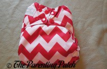 Nicki's Diapers One-Size Bamboo All-in-One Cloth Diaper Review
