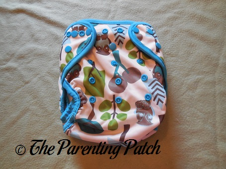 Front of Borrowed Planet All-in-Two Cloth Diaper
