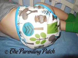 Bottom of Borrowed Planet All-in-Two Cloth Diaper on Toddler