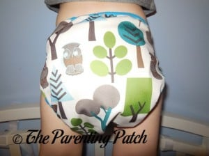 Back of Borrowed Planet All-in-Two Cloth Diaper on Toddler