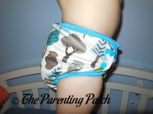 Side of Borrowed Planet All-in-Two Cloth Diaper on Toddler