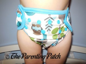 Front of Borrowed Planet All-in-Two Cloth Diaper on Toddler 2