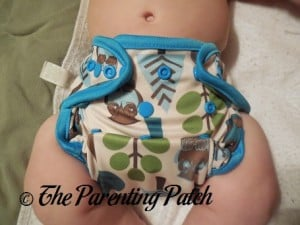Front of Borrowed Planet All-in-Two Cloth Diaper on Infant