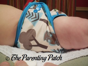 Side of Borrowed Planet All-in-Two Cloth Diaper on Infant