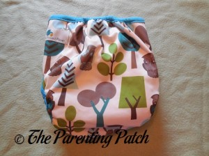 Back of Borrowed Planet All-in-Two Cloth Diaper